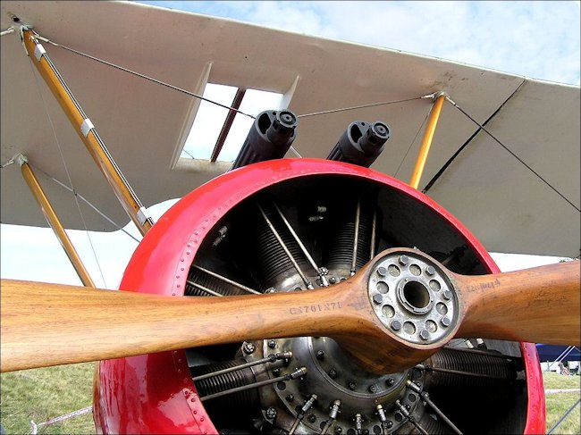 The Royal Flying Corps used the Sopwith Pup in 1916